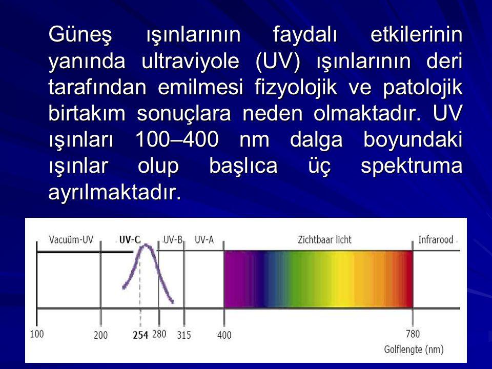 Güneş ışınlarının faydalı etkilerinin yanında ultraviyole (UV) ışınlarının deri tarafından emilmesi fizyolojik ve patolojik birtakım sonuçlara neden olmaktadır.