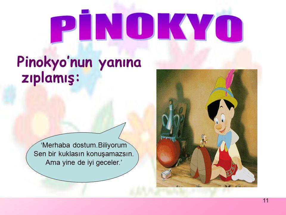 PİNOKYO Pinokyo'nun yanına zıplamış: 'Merhaba dostum.Biliyorum