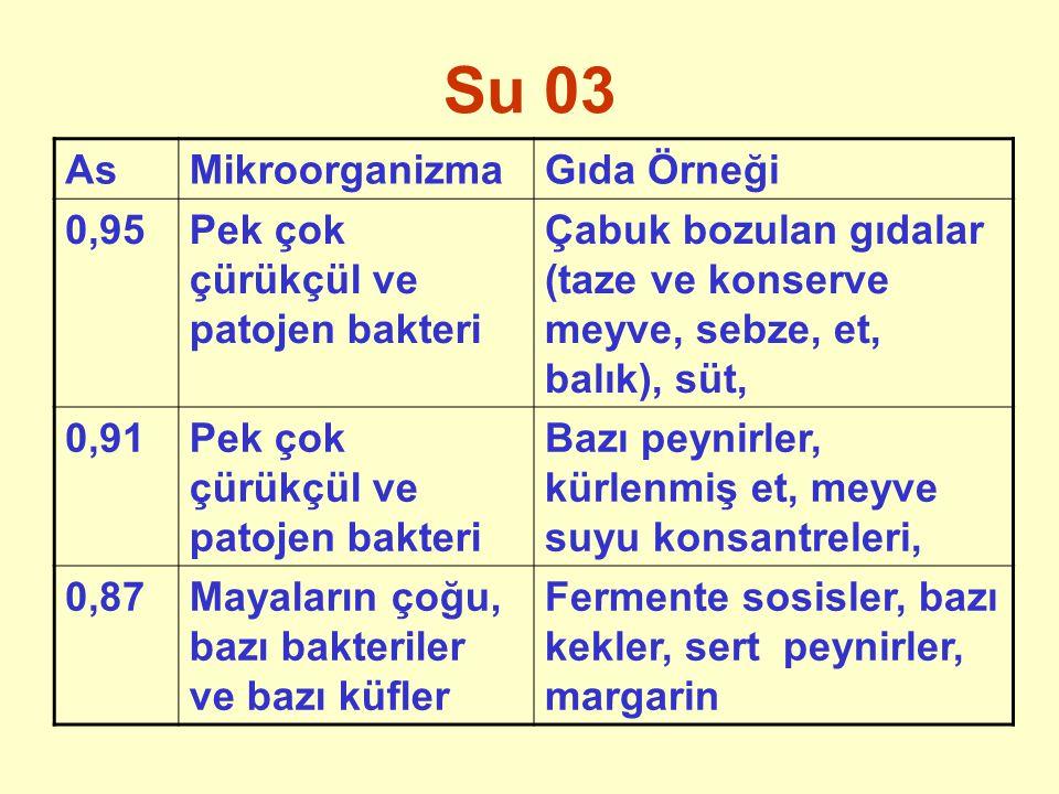 Su 03 As Mikroorganizma Gıda Örneği 0,95