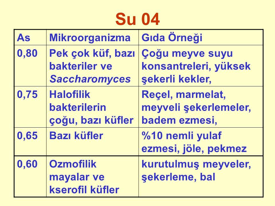Su 04 As Mikroorganizma Gıda Örneği 0,80