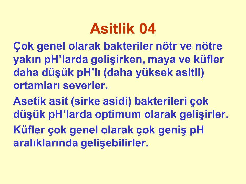 Asitlik 04