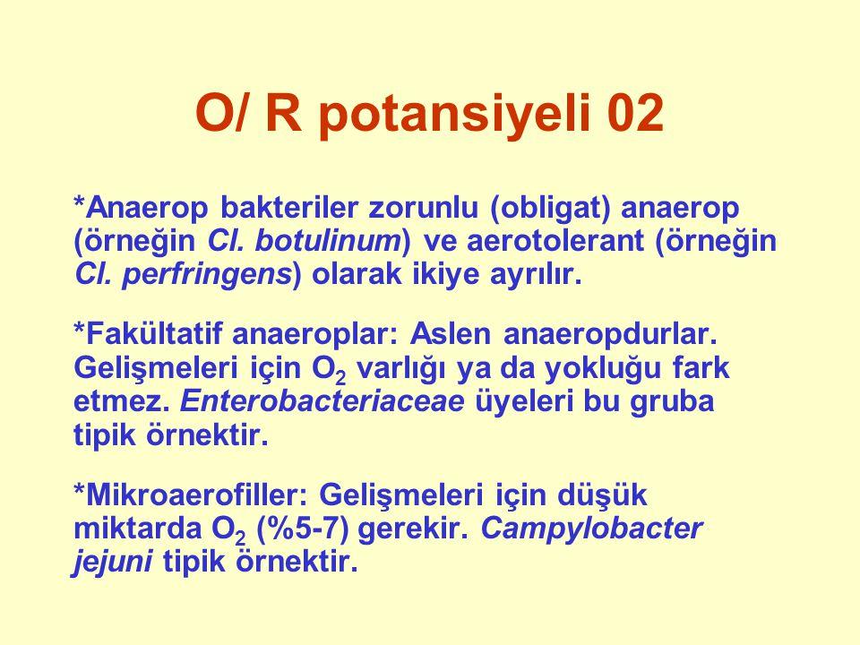 O/ R potansiyeli 02