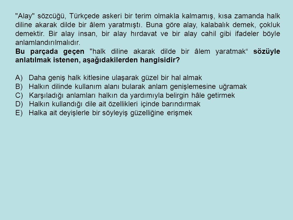 Alay sözcüğü, Türkçede askeri bir terim olmakla kalmamış, kısa zamanda halk diline akarak dilde bir âlem yaratmıştı. Buna göre alay, kalabalık demek, çokluk demektir. Bir alay insan, bir alay hırdavat ve bir alay cahil gibi ifadeler böyle anlamlandırılmalıdır.