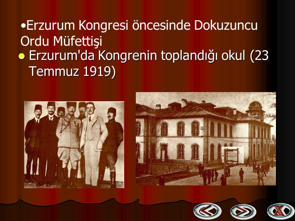 Erzurum Kongresi öncesinde Dokuzuncu Ordu Müfettişi
