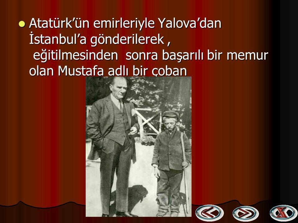 Atatürk'ün emirleriyle Yalova'dan İstanbul'a gönderilerek , eğitilmesinden sonra başarılı bir memur olan Mustafa adlı bir çoban