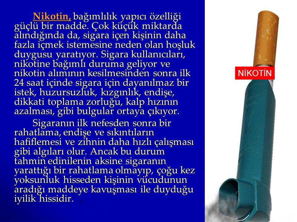 Nikotin, bağımlılık yapıcı özelliği güçlü bir madde