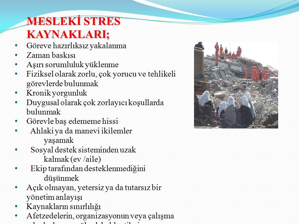 MESLEKİ STRES KAYNAKLARI;