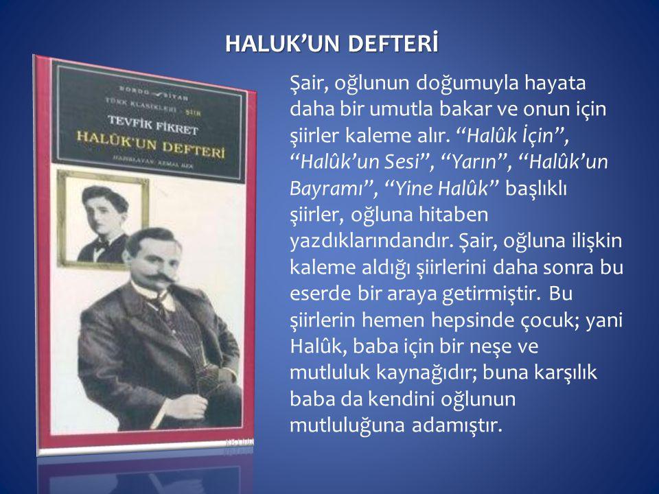 HALUK'UN DEFTERİ