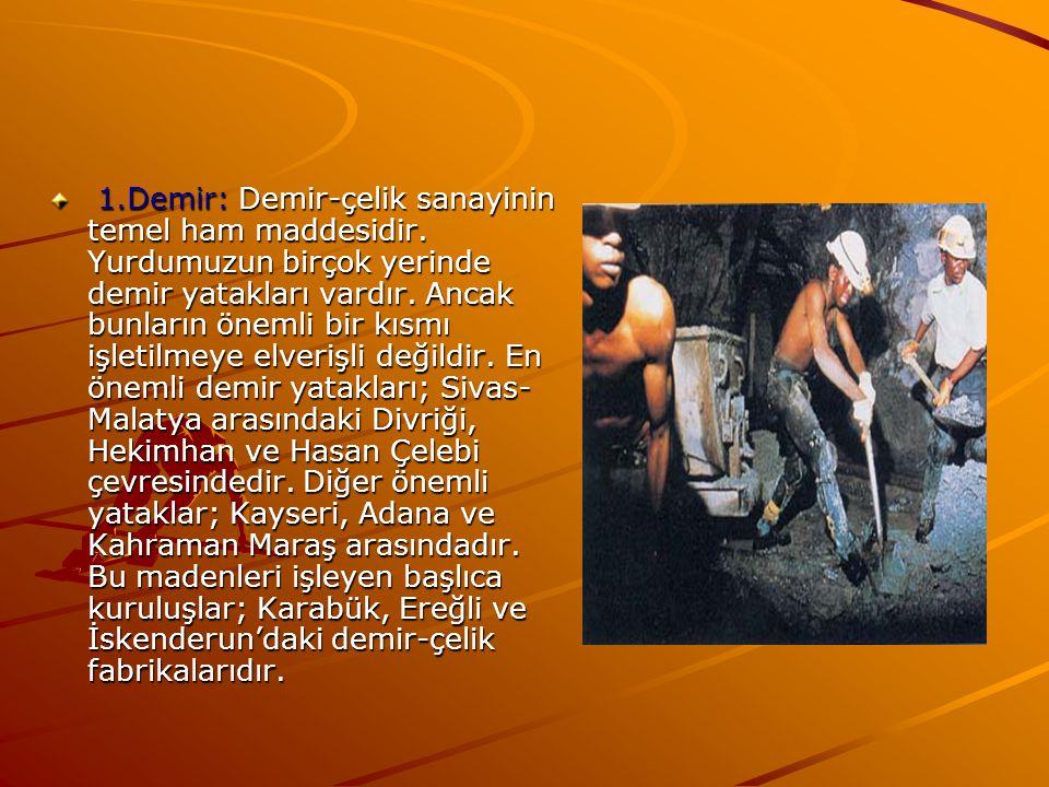 1. Demir: Demir-çelik sanayinin temel ham maddesidir