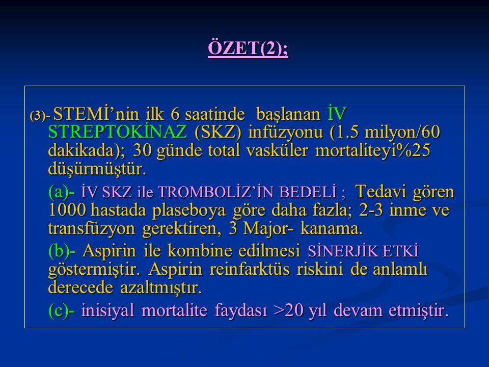 ÖZET(2);