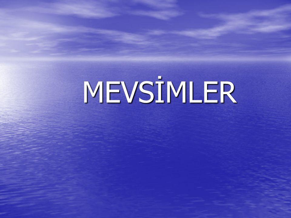 MEVSİMLER