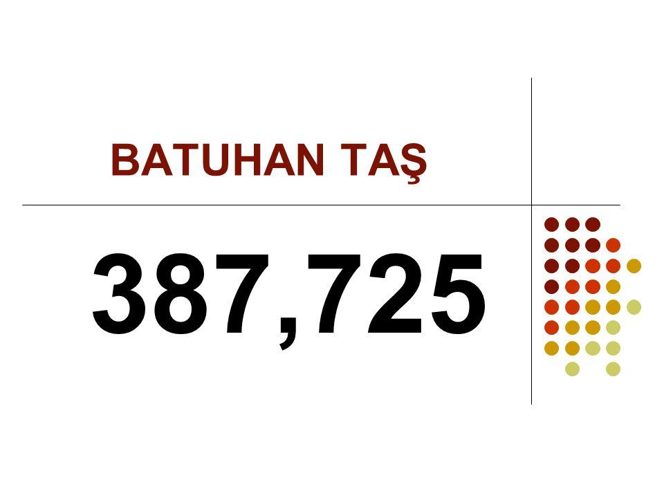 BATUHAN TAŞ 387,725