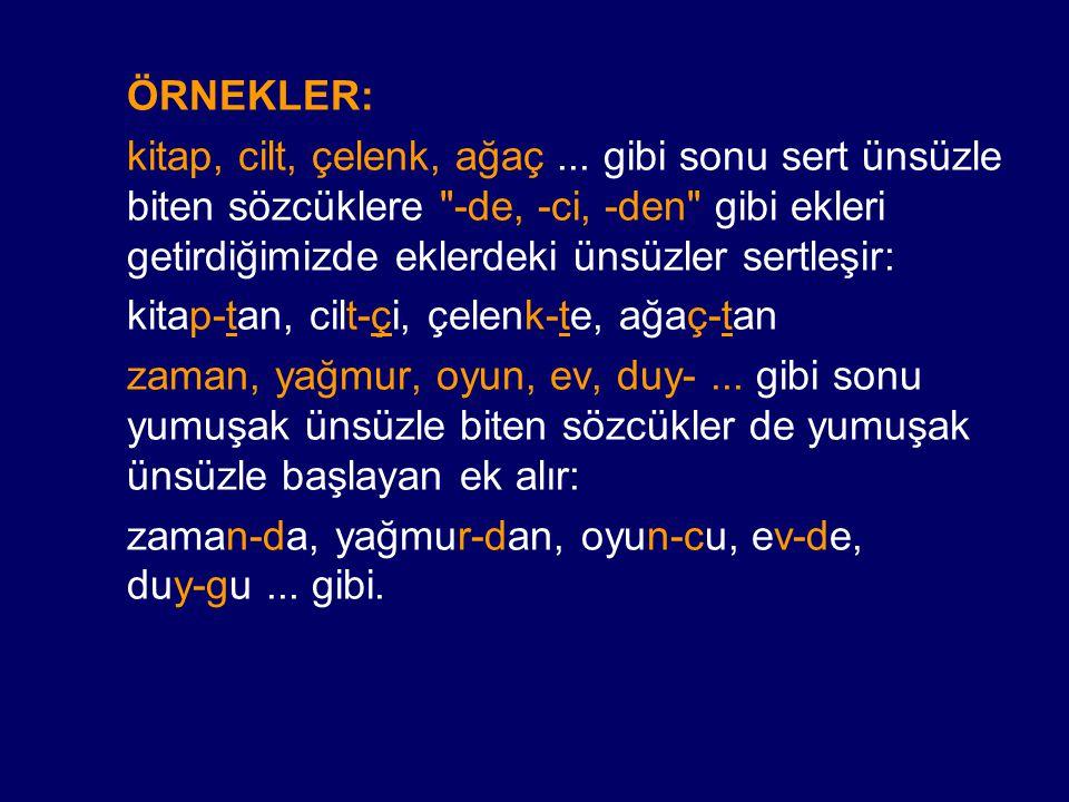ÖRNEKLER: