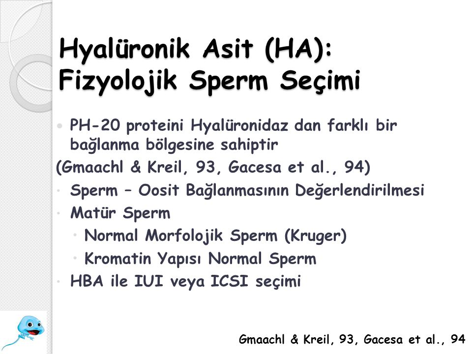 Hyalüronik Asit (HA): Fizyolojik Sperm Seçimi