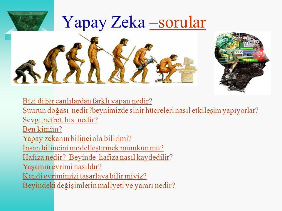 Yapay Zeka –sorular Bizi diğer canlılardan farklı yapan nedir