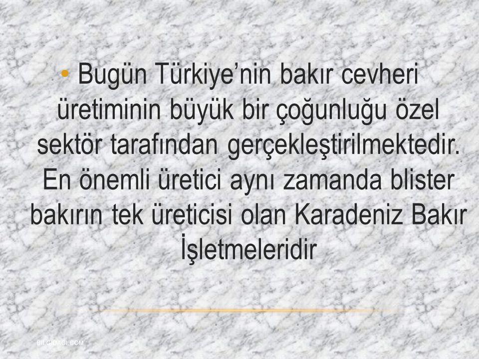 Bugün Türkiye'nin bakır cevheri üretiminin büyük bir çoğunluğu özel sektör tarafından gerçekleştirilmektedir. En önemli üretici aynı zamanda blister bakırın tek üreticisi olan Karadeniz Bakır İşletmeleridir