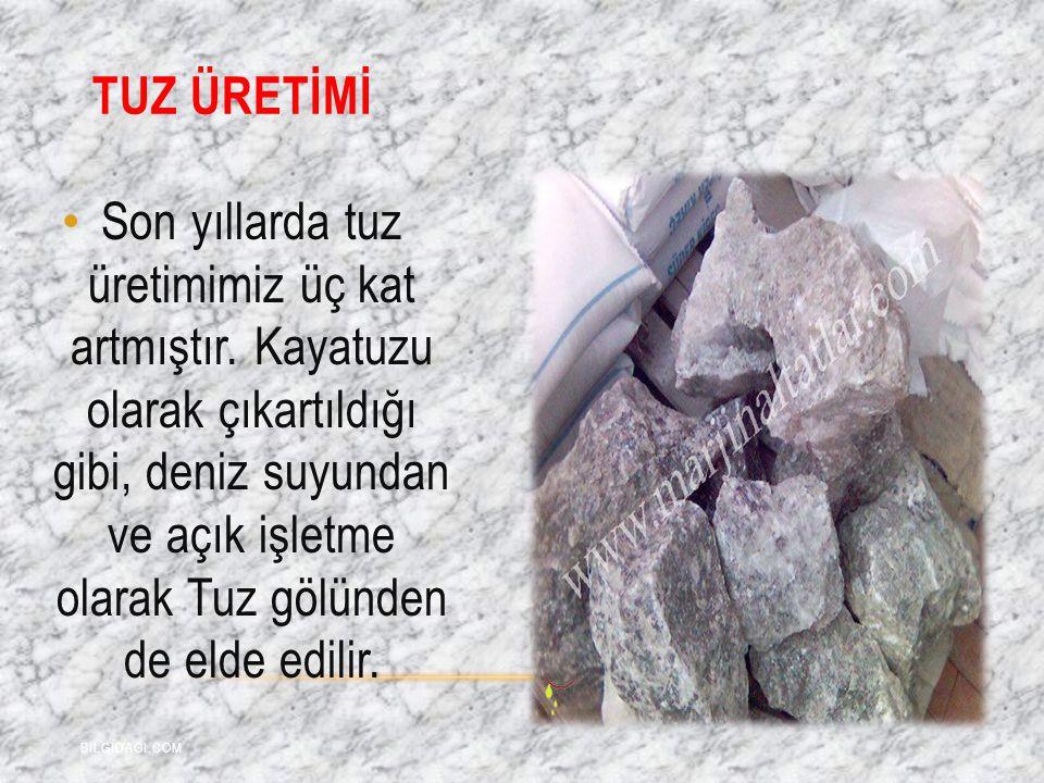 TUZ ÜRETİMİ