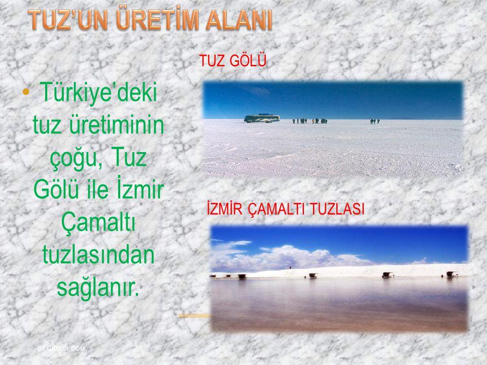TUZ'UN ÜRETİM ALANI TUZ GÖLÜ. Türkiye'deki tuz üretiminin çoğu, Tuz Gölü ile İzmir Çamaltı tuzlasından sağlanır.