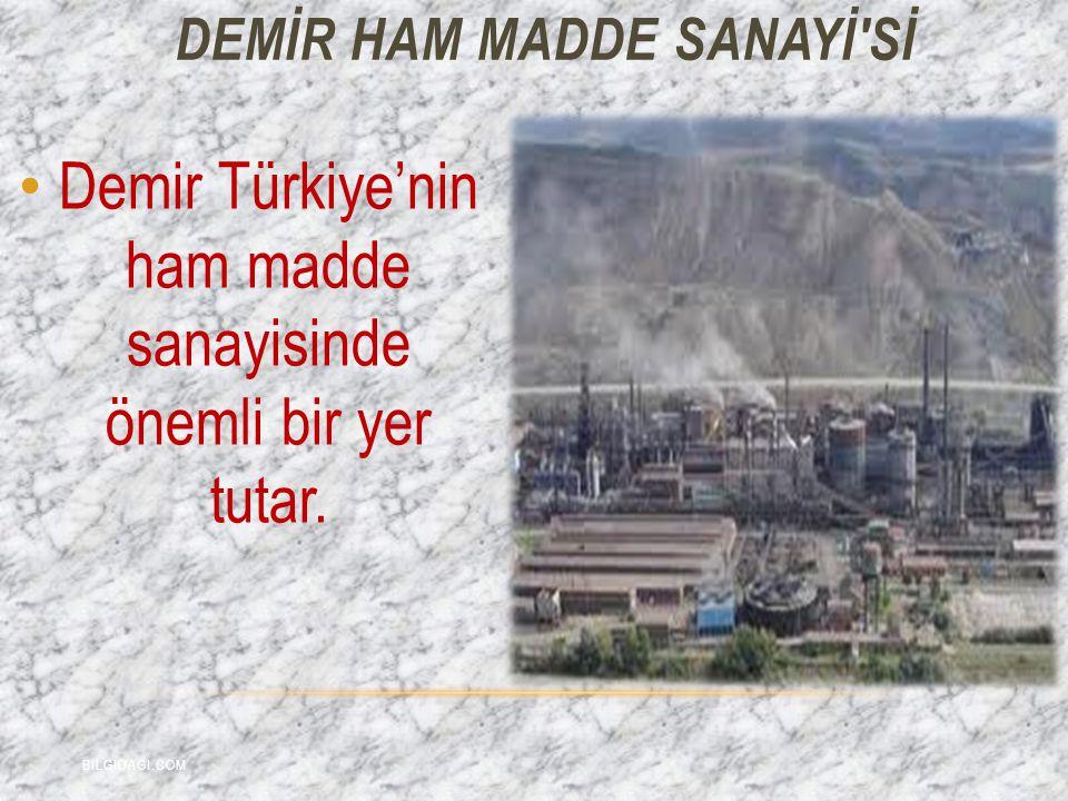 DEMİR HAM MADDE Sanayİ sİ