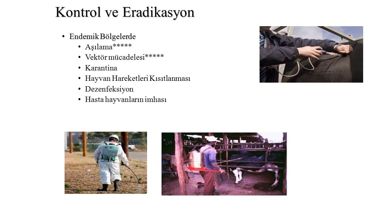 Kontrol ve Eradikasyon