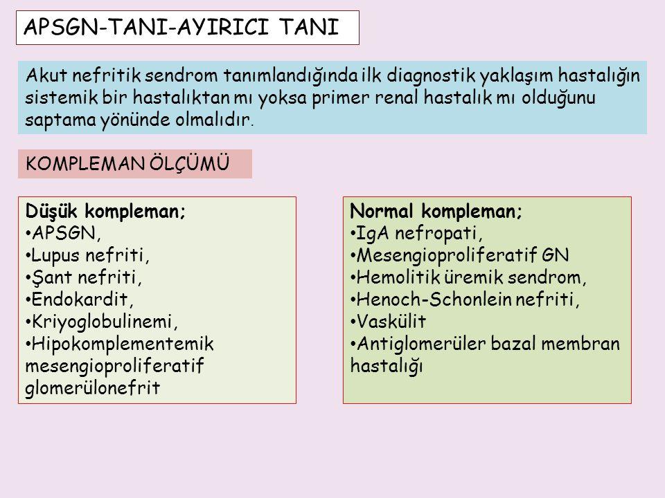 APSGN-TANI-AYIRICI TANI