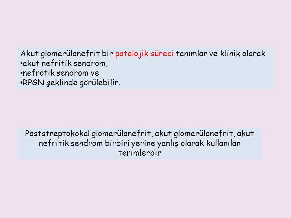 Akut glomerülonefrit bir patolojik süreci tanımlar ve klinik olarak