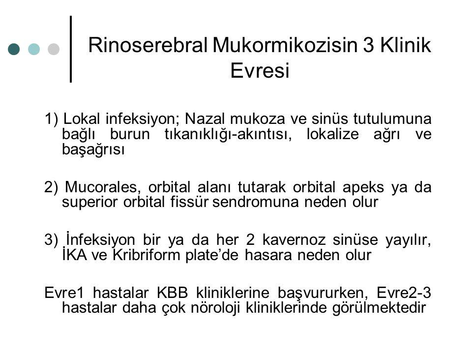 Rinoserebral Mukormikozisin 3 Klinik Evresi