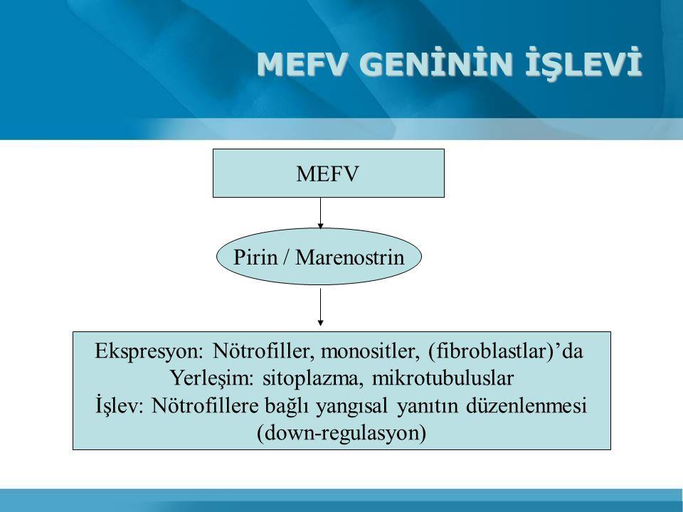 MEFV GENİNİN İŞLEVİ MEFV Pirin / Marenostrin