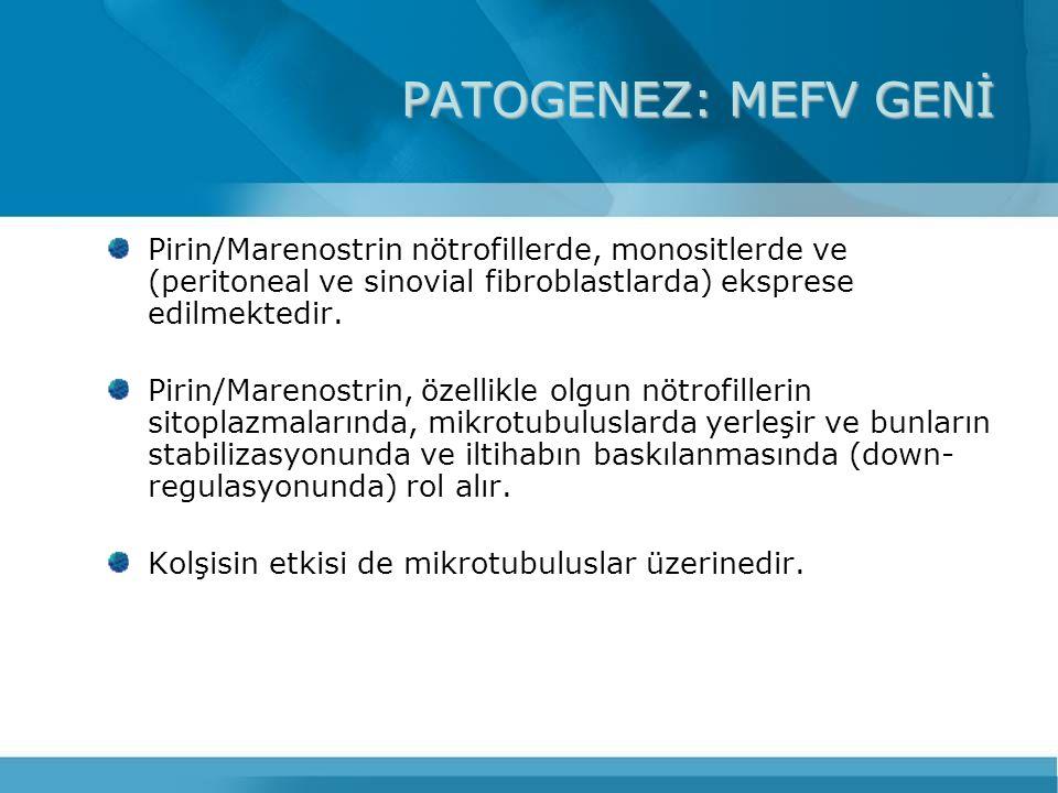PATOGENEZ: MEFV GENİ Pirin/Marenostrin nötrofillerde, monositlerde ve (peritoneal ve sinovial fibroblastlarda) eksprese edilmektedir.