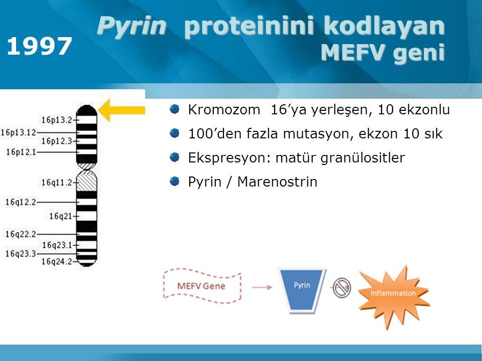 Pyrin proteinini kodlayan MEFV geni