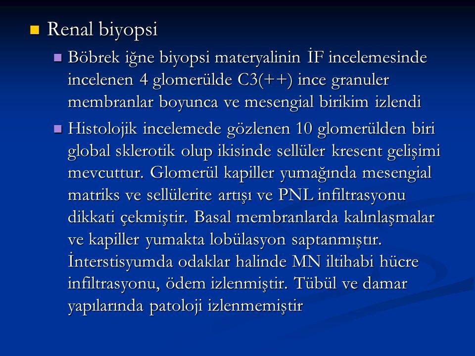 Renal biyopsi