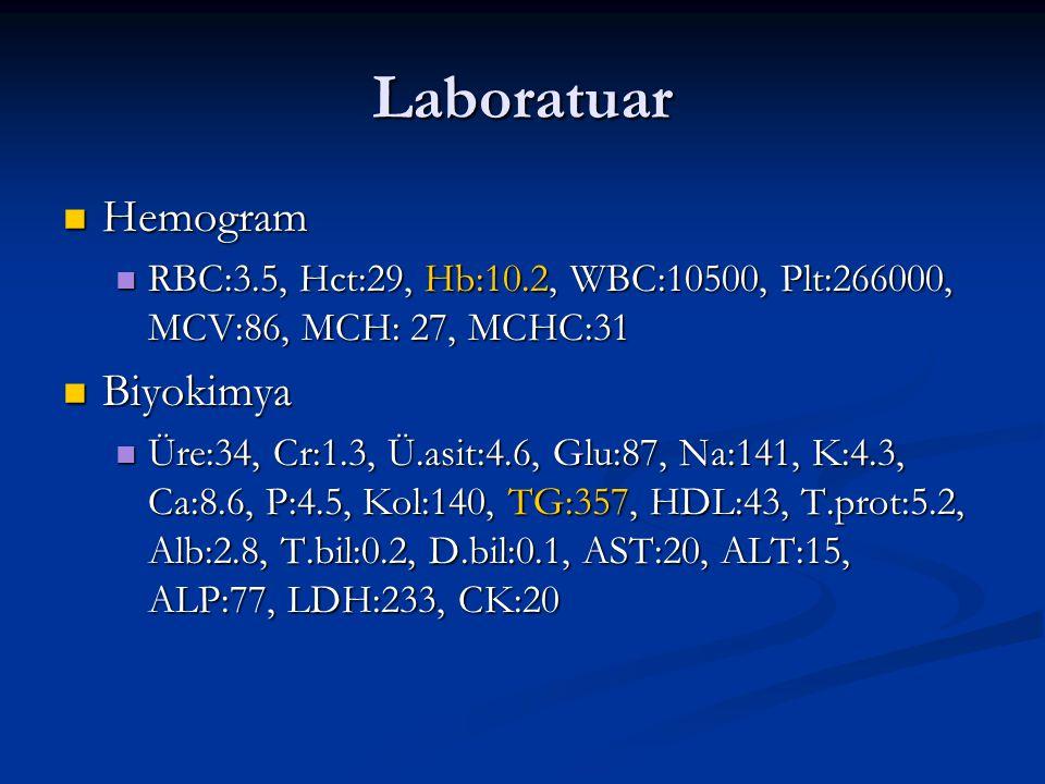 Laboratuar Hemogram Biyokimya
