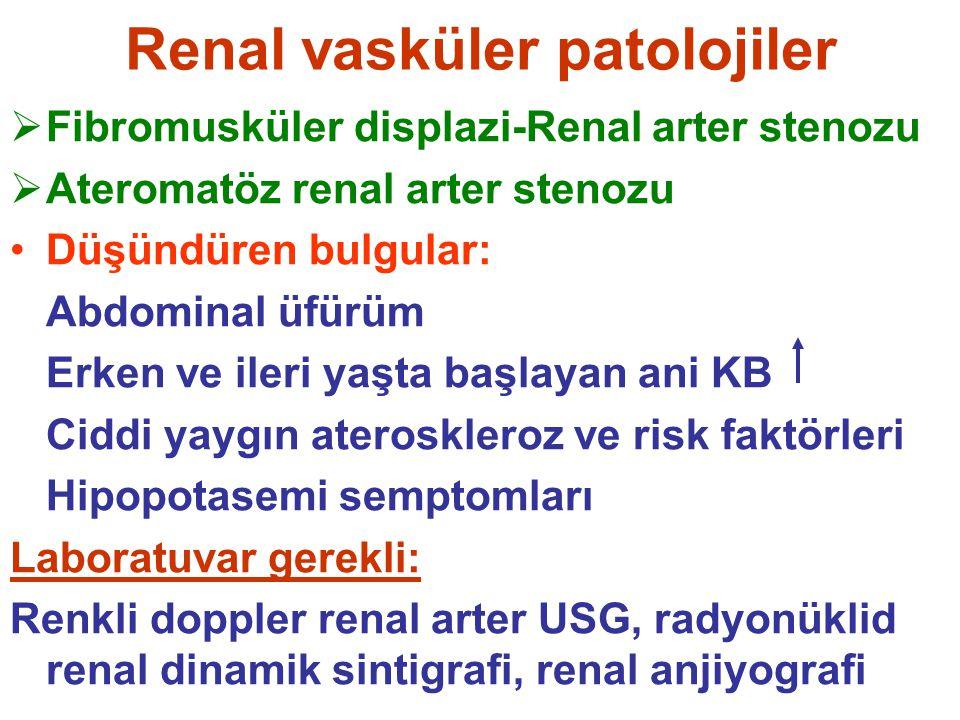 Renal vasküler patolojiler