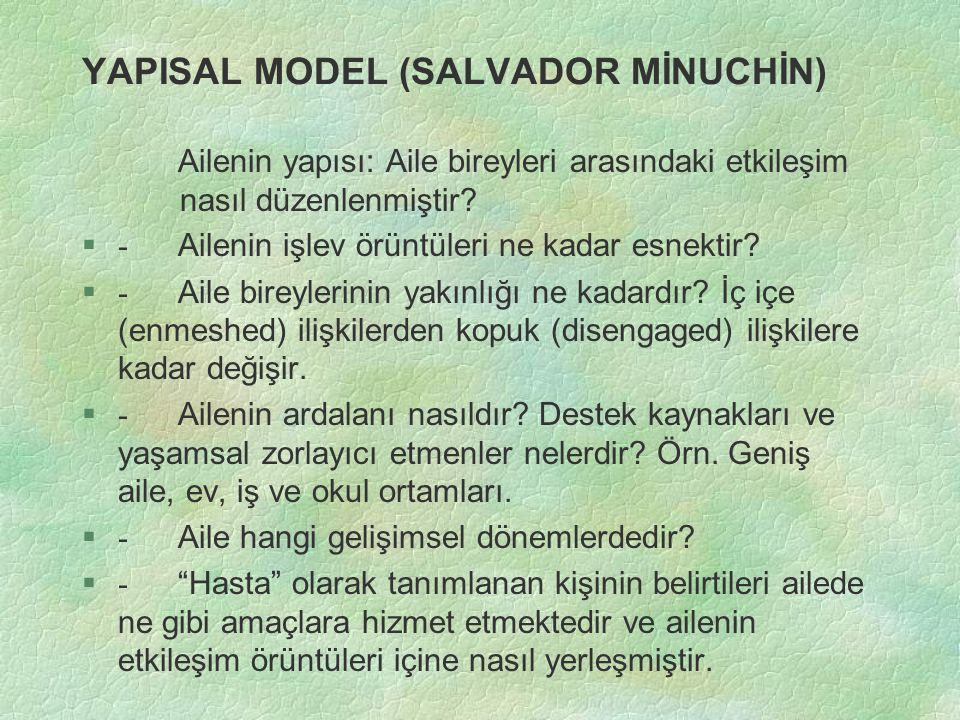 YAPISAL MODEL (SALVADOR MİNUCHİN)