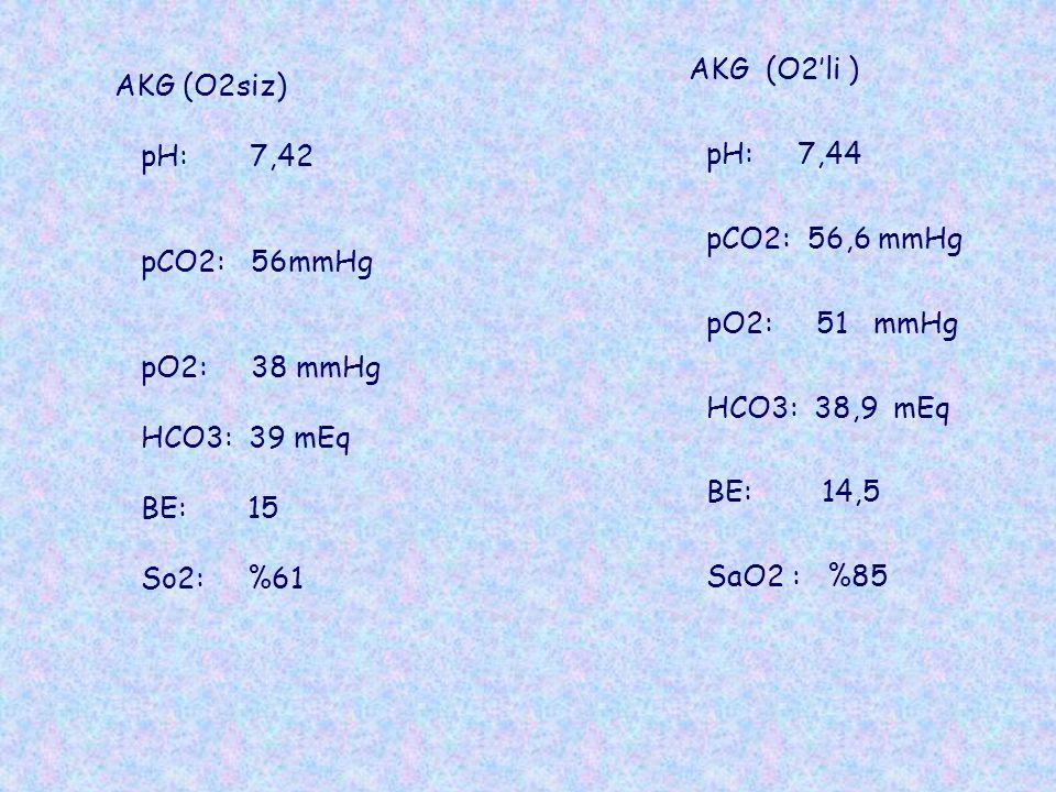 AKG (O2'li ) pH: 7,44. pCO2: 56,6 mmHg. pO2: 51 mmHg. HCO3: 38,9 mEq. BE: 14,5.