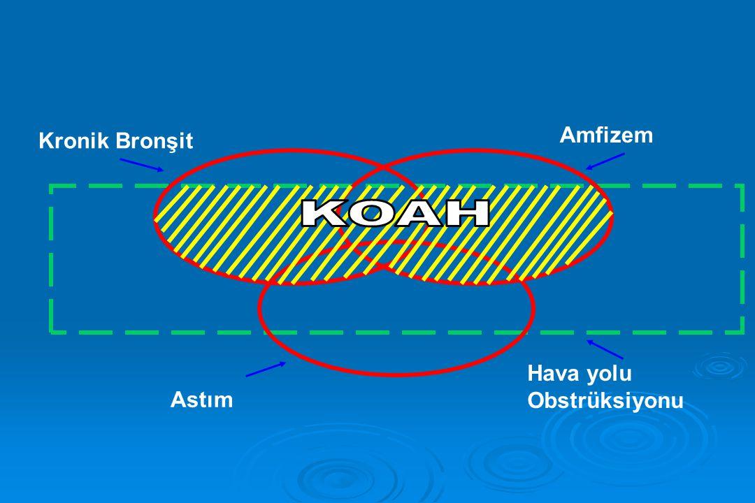 Kronik Bronşit Amfizem Astım KOAH Hava yolu Obstrüksiyonu