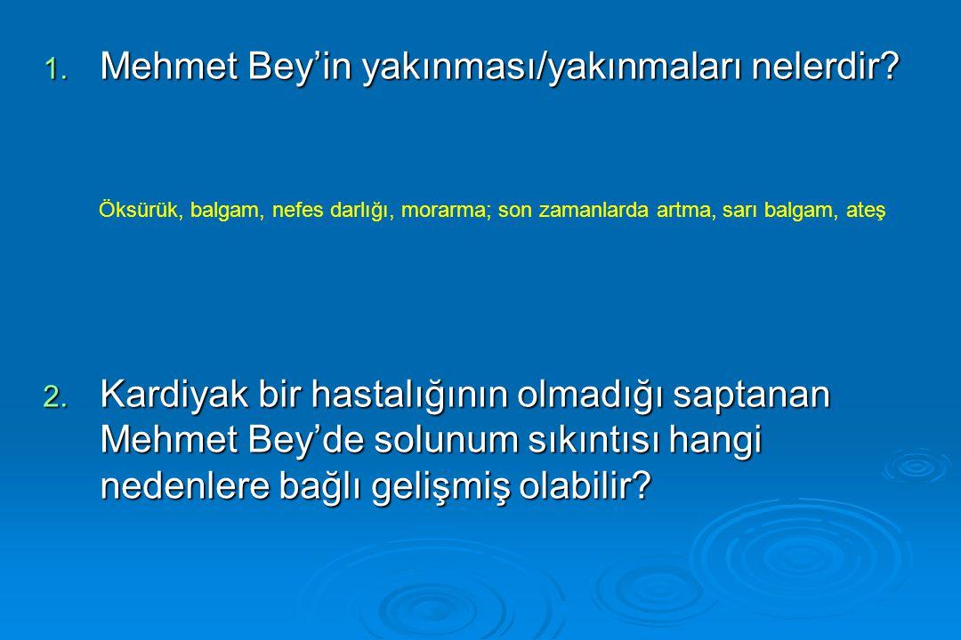 Mehmet Bey'in yakınması/yakınmaları nelerdir