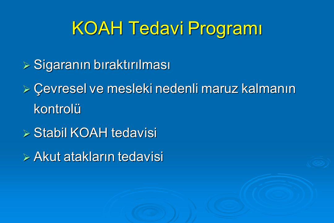 KOAH Tedavi Programı Sigaranın bıraktırılması