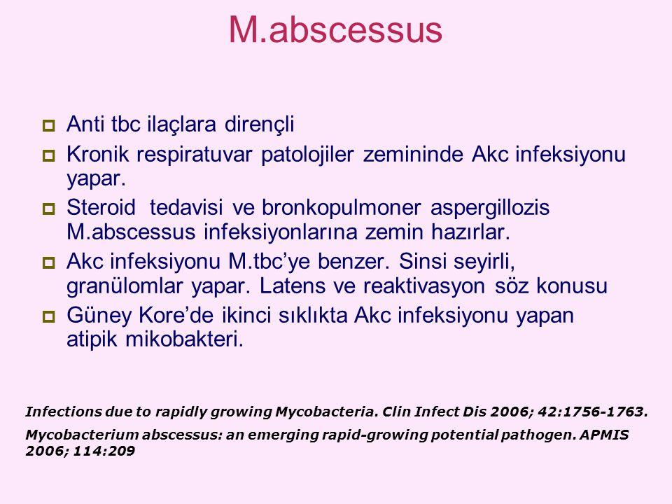 M.abscessus Anti tbc ilaçlara dirençli