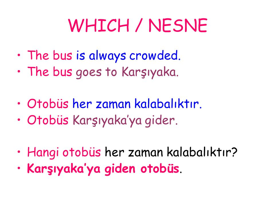 WHICH / NESNE The bus is always crowded. The bus goes to Karşıyaka.