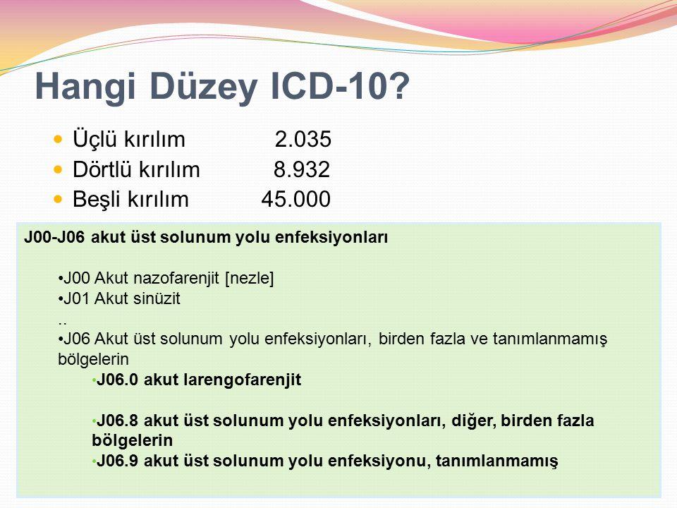 Hangi Düzey ICD-10 Üçlü kırılım 2.035 Dörtlü kırılım 8.932