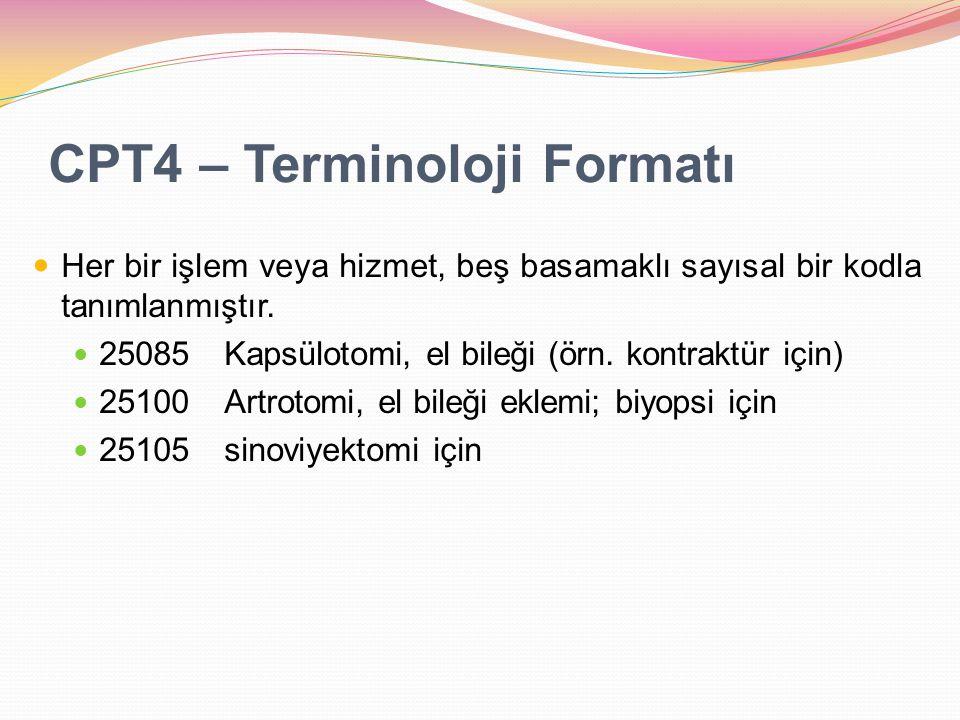 CPT4 – Terminoloji Formatı