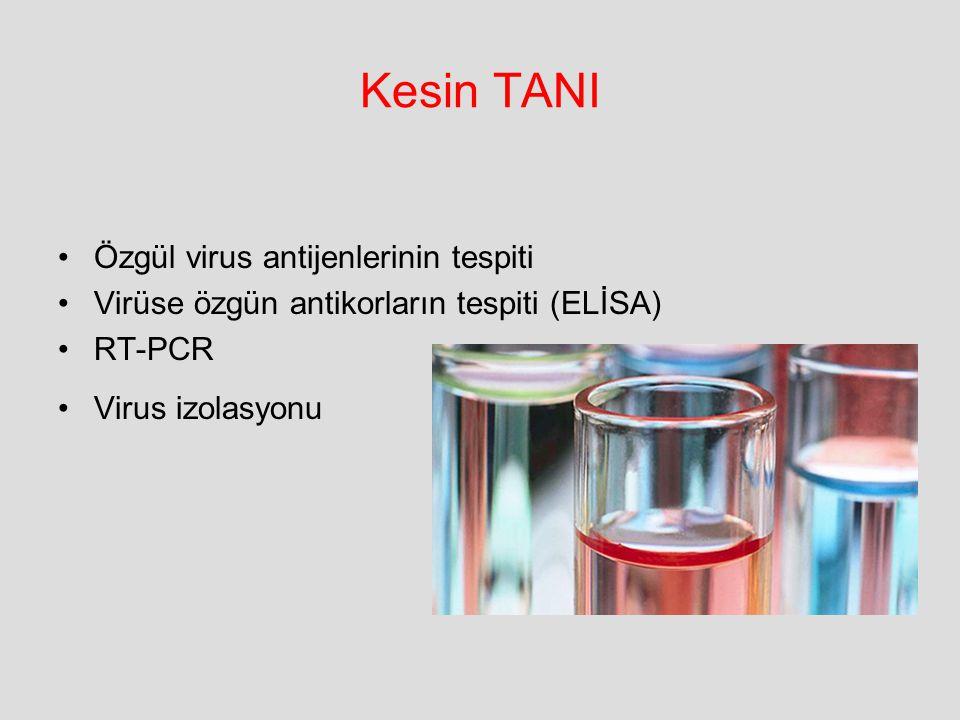 Kesin TANI Özgül virus antijenlerinin tespiti
