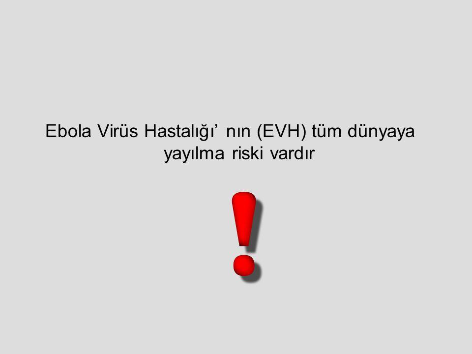 Ebola Virüs Hastalığı' nın (EVH) tüm dünyaya yayılma riski vardır