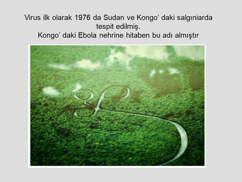 Virus ilk olarak 1976 da Sudan ve Kongo' daki salgıniarda
