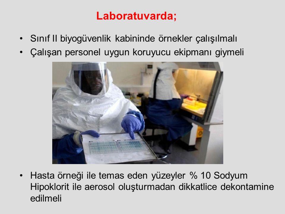 Laboratuvarda; Sınıf II biyogüvenlik kabininde örnekler çalışılmalı