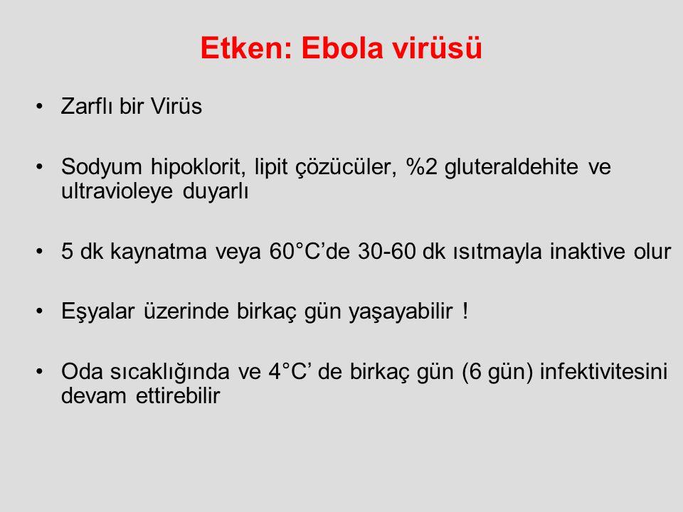 Etken: Ebola virüsü Zarflı bir Virüs