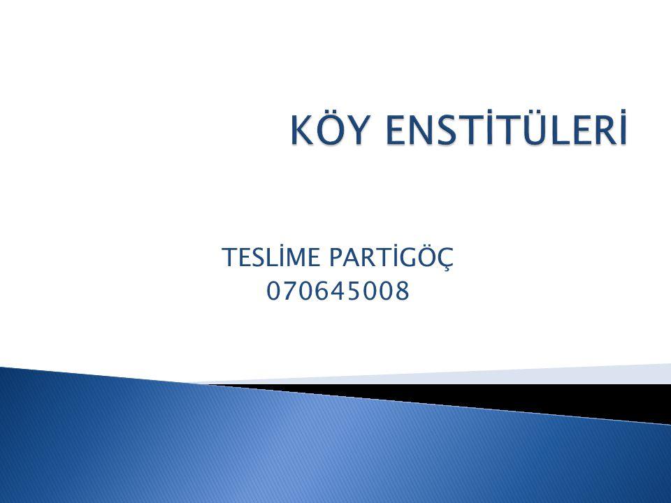 KÖY ENSTİTÜLERİ TESLİME PARTİGÖÇ 070645008