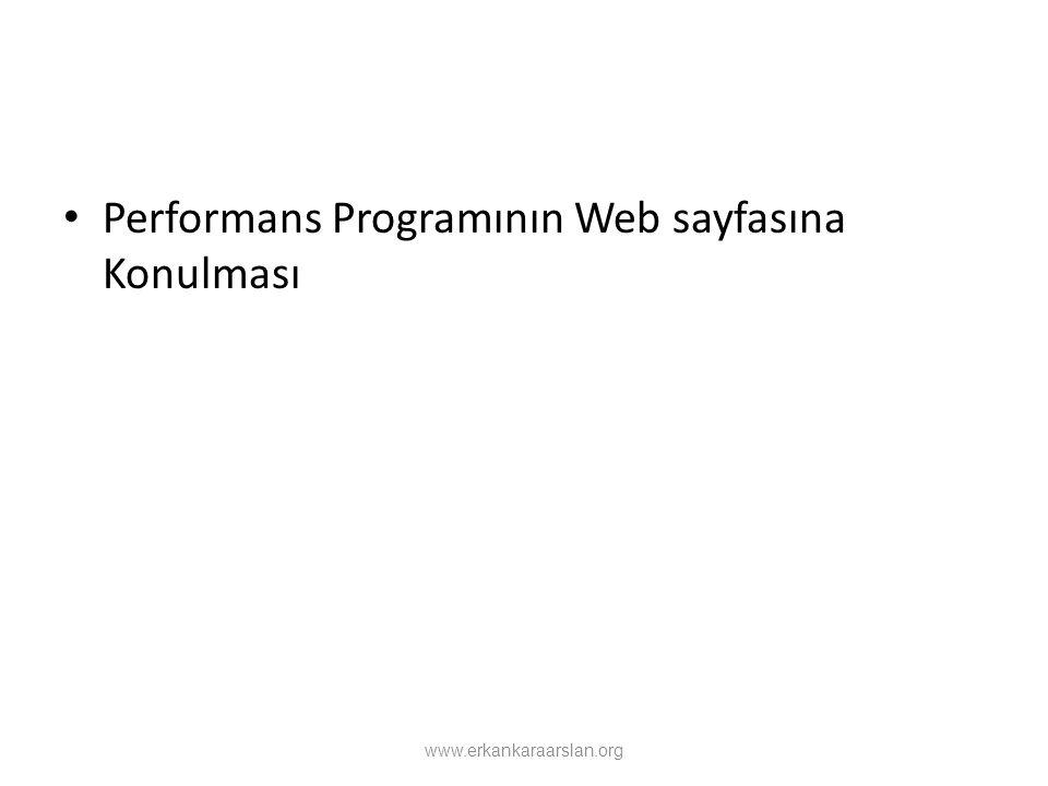 Performans Programının Web sayfasına Konulması