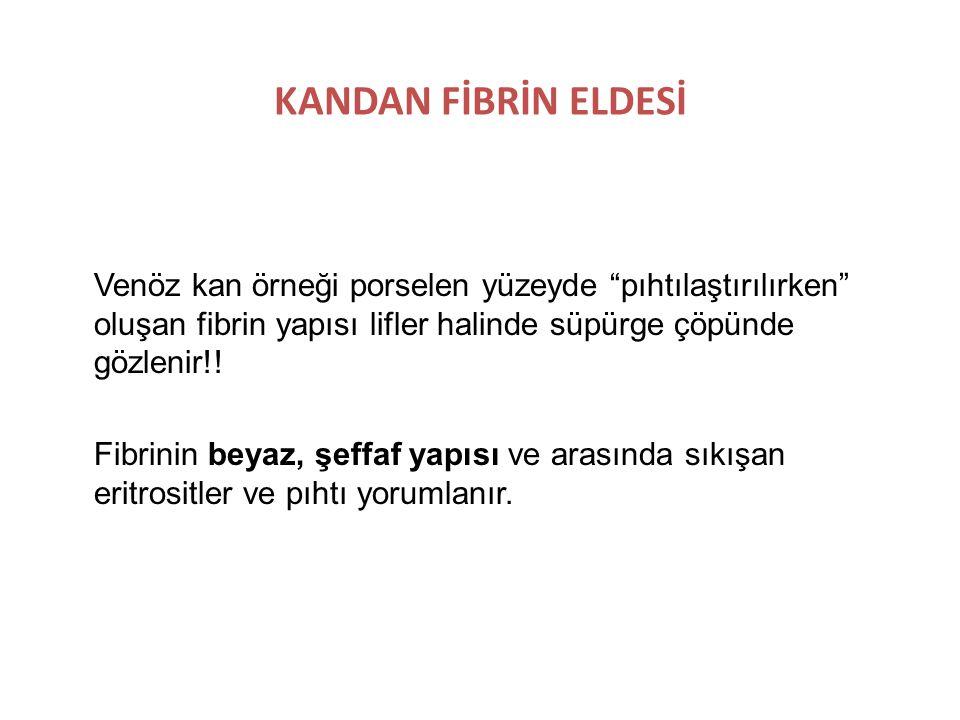 KANDAN FİBRİN ELDESİ